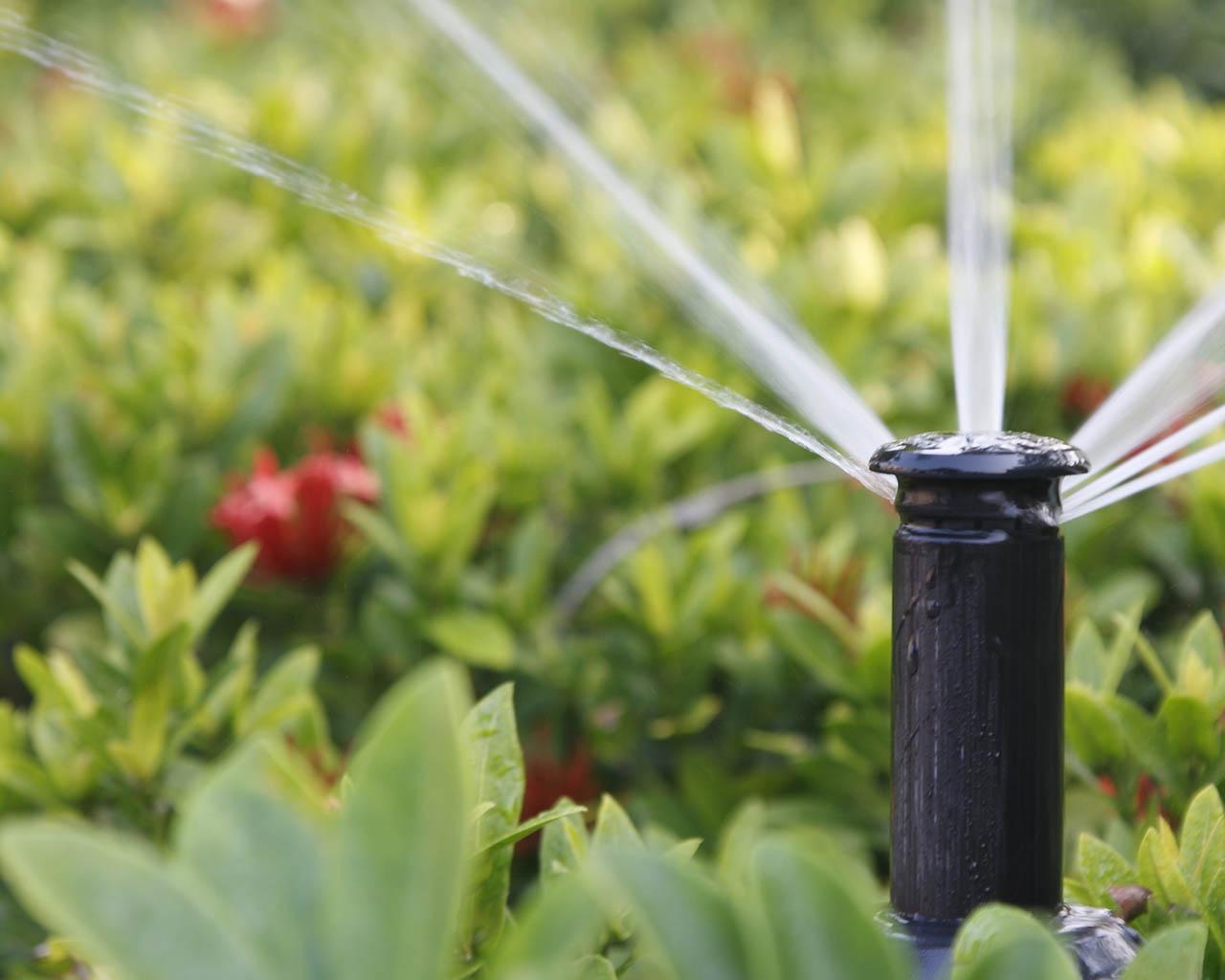Полуавтоматическая система полива своими руками